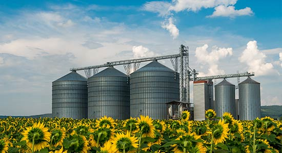 Food Processing and Agribusiness